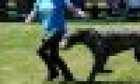 phoca_thumb_s_20150920-_DSC0199.jpg