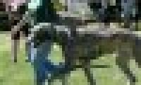 phoca_thumb_s_20150920-_DSC0253.jpg