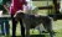 phoca_thumb_s_20150920-_DSC0404.jpg