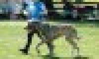 phoca_thumb_s_20150920-_DSC0613.jpg