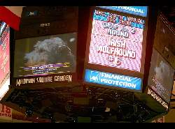 Westminster 2005 Scoreboard Showing Merlin