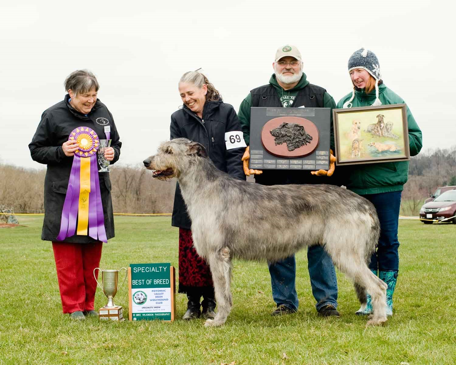 Best Of Breed 2018