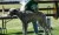 phoca_thumb_s_20150920-_DSC0242.jpg