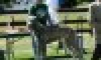 phoca_thumb_s_20150920-_DSC0244.jpg