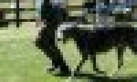 phoca_thumb_s_20150920-_DSC0325.jpg