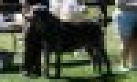 phoca_thumb_s_20150920-_DSC0340.jpg