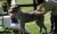 phoca_thumb_s_20150920-_DSC0373.jpg