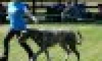 phoca_thumb_s_20150920-_DSC0384.jpg
