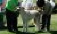 phoca_thumb_s_20150920-_DSC0438.jpg